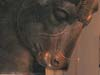 08-16-04_image-1_thumb.jpg
