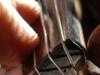 fiddler_thumb.jpg